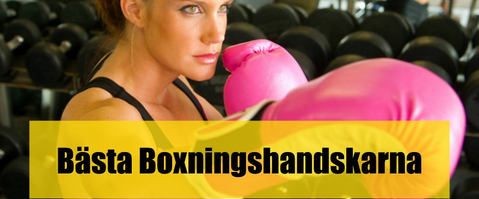 Bäst boxningshandskar