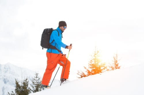 Olika sorters skidor
