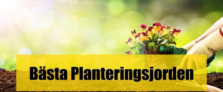 Bäst Planteringsjord