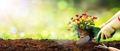 Bättre syretillförsel till växternas rötter
