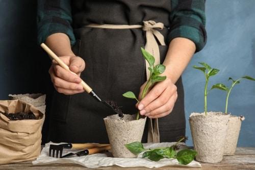 Stabila planteringsbord