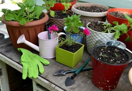 Köp ett bord för plantering