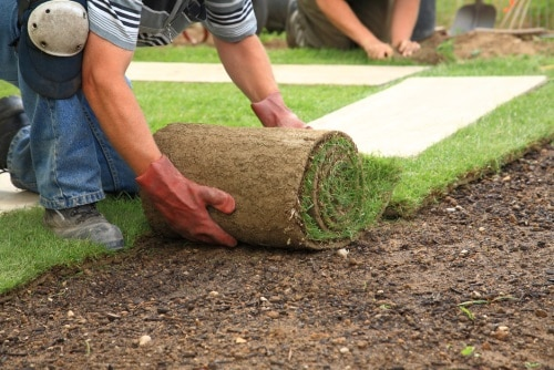 Viktigt att tänka på när du ska anlägga en ny gräsmatta.