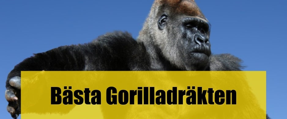 Bäst Gorilladräkt