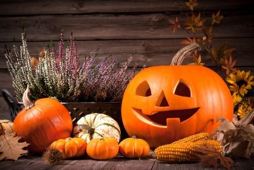 Halloween är en gammal högtid som firas den 31 oktober varje år.
