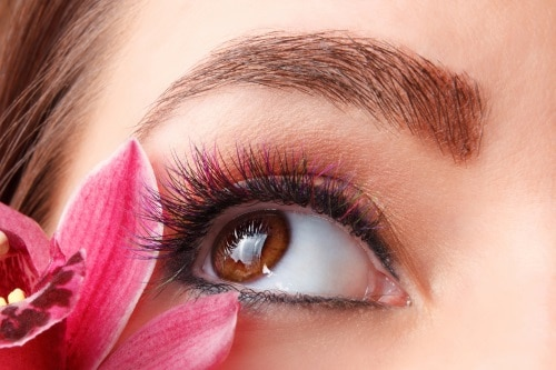 Bra att veta om ögonfransnäring